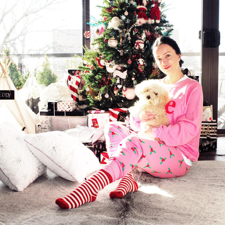 Wildfox Christmas.B A Gorgie